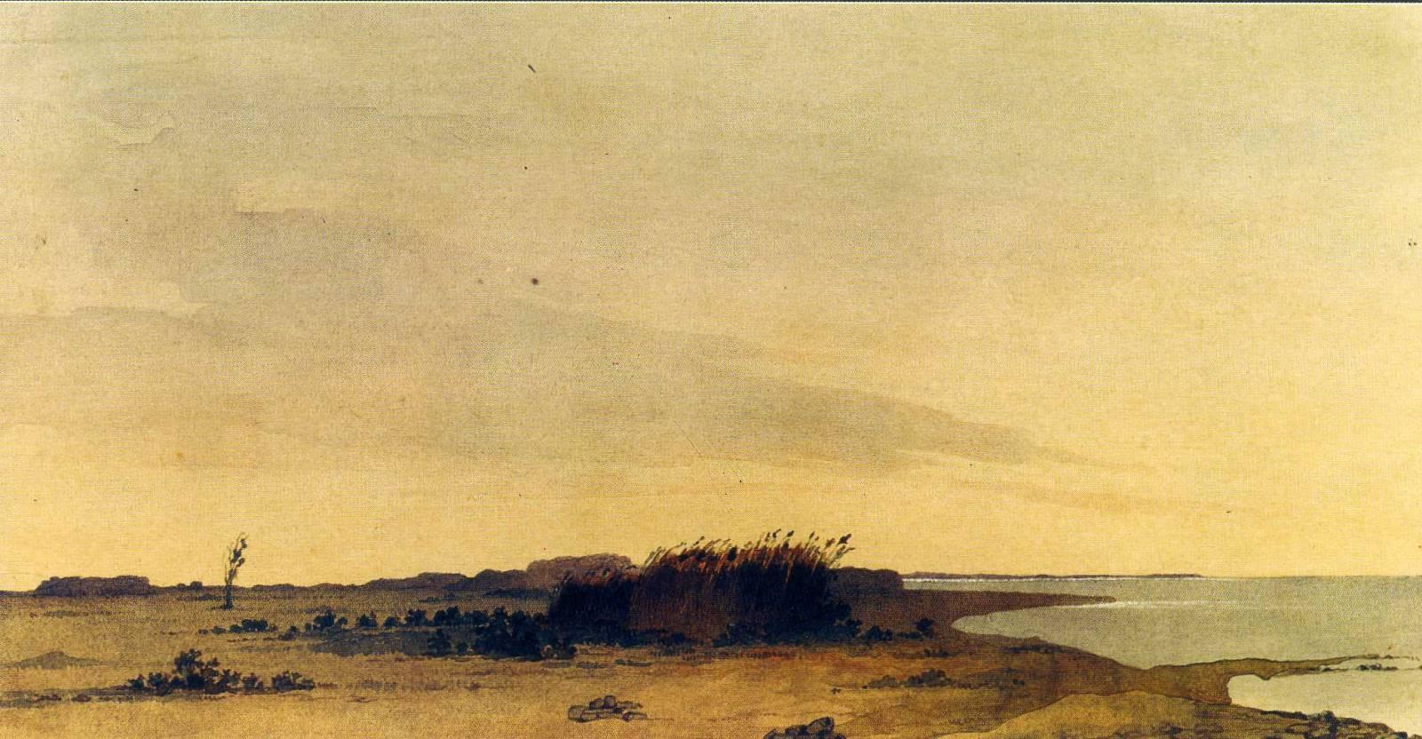 Низький берег острова Ніколая